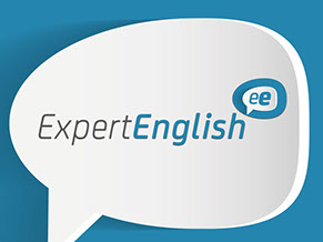 Expert English Logo and Website